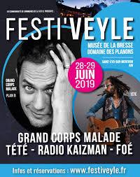 affiche festiveyle 2019